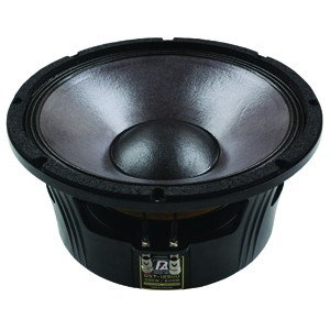 P AUDIO WOOFER GST 12500